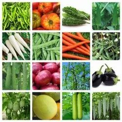 Natural Vegetable Seeds, Packaging Type: 5o G, Packaging Size: 50g & 100g
