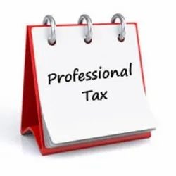 Professional Tax Consultancy Service, in Pan India