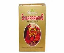 Shilapravan Special