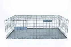 Pigeon Trap Cage