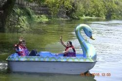 IRS Approved Duck Pedal Boat 6 Seater