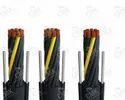 Giovenzana Pendant Cable