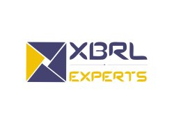 Individual Consultant Proprietorship ROC, RBI, XBRL, SEBI Filling