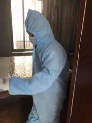 Home Termites Pest Control Service, in Pune