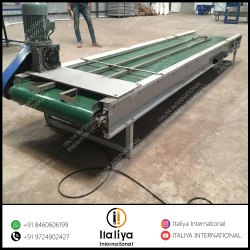 Cashew Kernel Inspection Conveyor