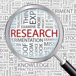 Qualitative Research Services