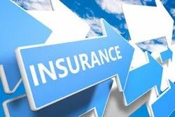 Insurance Coverage Services