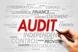 One-Time Business Audit Service