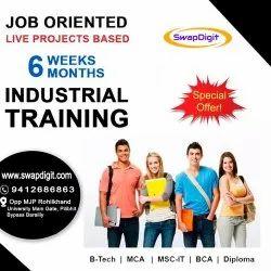 6 Months Industrial Trainings