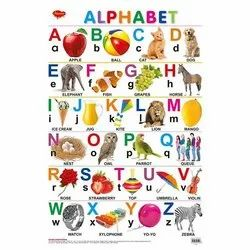 Alphabets And Numbers Hard Laminated Different Charts