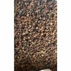 Makoi Seed