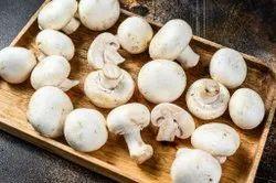 Pure Organic Pan India Button Mushroom