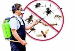 Bee Home Pest Control Service