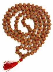 8 Mukhi Rudraksha Mala