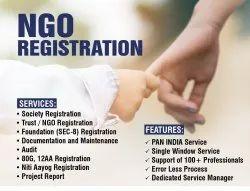 Trust NGO Registration Services, in Delhi