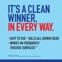 Domex Multipurpose Disinfectant Spray, 450 ML