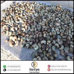 Row Cashew Nuts