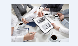 Business andBusiness and Management Consultants Management Consultants