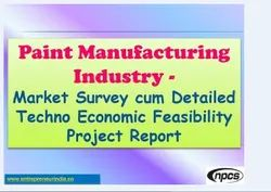Project Report Services for Paint Plant