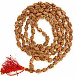 2 Mukhi Rudraksha Mala