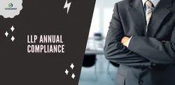 Individual Consultant Proprietorship Llp Annual Compliance