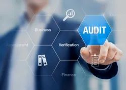 Consulting Firm One-Time Business Audit Services
