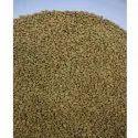 Fenugreek Methi Seed