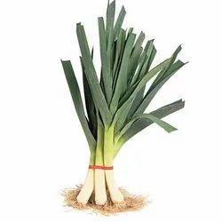 A Grade Green Fresh Leek