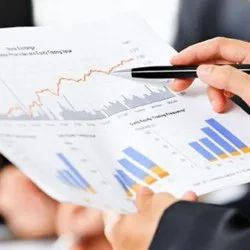Accounting Analysis Support Service