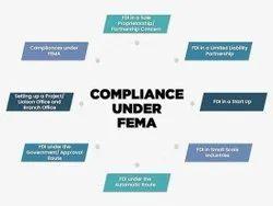 Fema Compliances Service