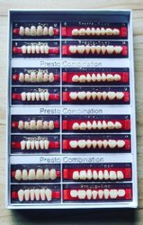 2GM Acrylic Teeth Set, for Laboratory