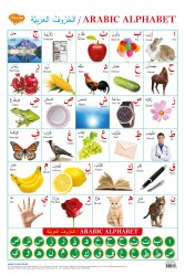 Arabic Alphabet Varnamala Hard Laminated Chat