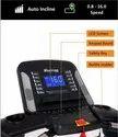 Heavy Duty Motorized Treadmill Robust X1