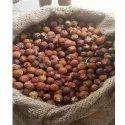 Reetha Soapnut Extract