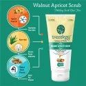 Treeology Walnut Apricot Scrub