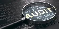 Consulting Firm One-Time CA Company Audit