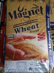 Golden 30kg Magnet MP Premium Quality Selected Wheat Grains