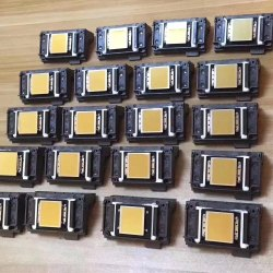 Epson XP600 DX11 Print Head  (Drop Size: 3PL)