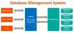 Database Management System Service