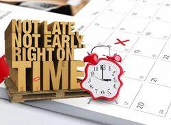 Delivery Timelines