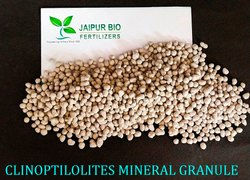 Clinoptilolites Mineral Granule