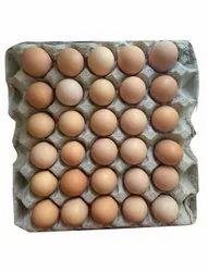 210件农场新鲜indbro棕色鸡蛋,用于混乱和家庭,包装类型:纸箱