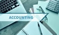 Company Registration Chartered Accountant Service