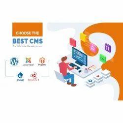 CMS Website Designing Service
