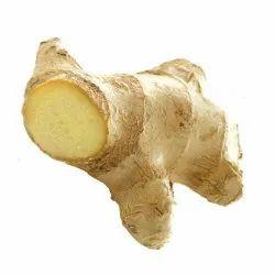 A Grade Pan India Fresh Green Ginger
