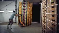 Online Pan India Cold Chain Logistics Service
