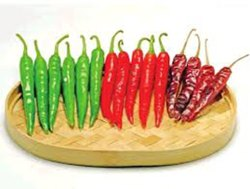 Green HYBRID CHILLI PRIYANKA / NUNHEMS, Packaging Type: Pouch, Packaging Size: 1500 Seeds