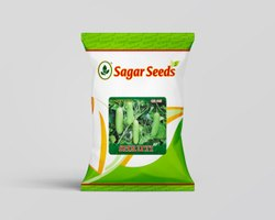 SBPL Shruti F-1 Cucumber Seed for Agriculture Purpose