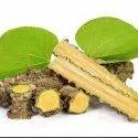 Organic Tinospora Cordifolia Green Giloy Stick