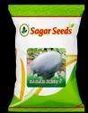 Sagar King Plus F-1 Hybrid Watermelon Seeds